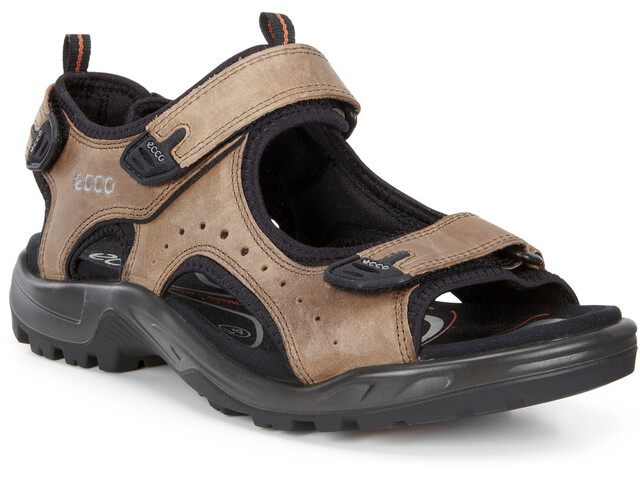 ECCO Andes II Chaussures Homme, navajo brown